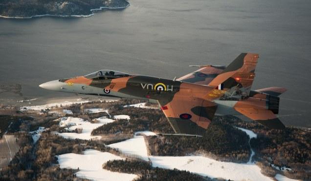 2015 Showbird Aerials